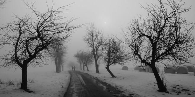 zima, drogi